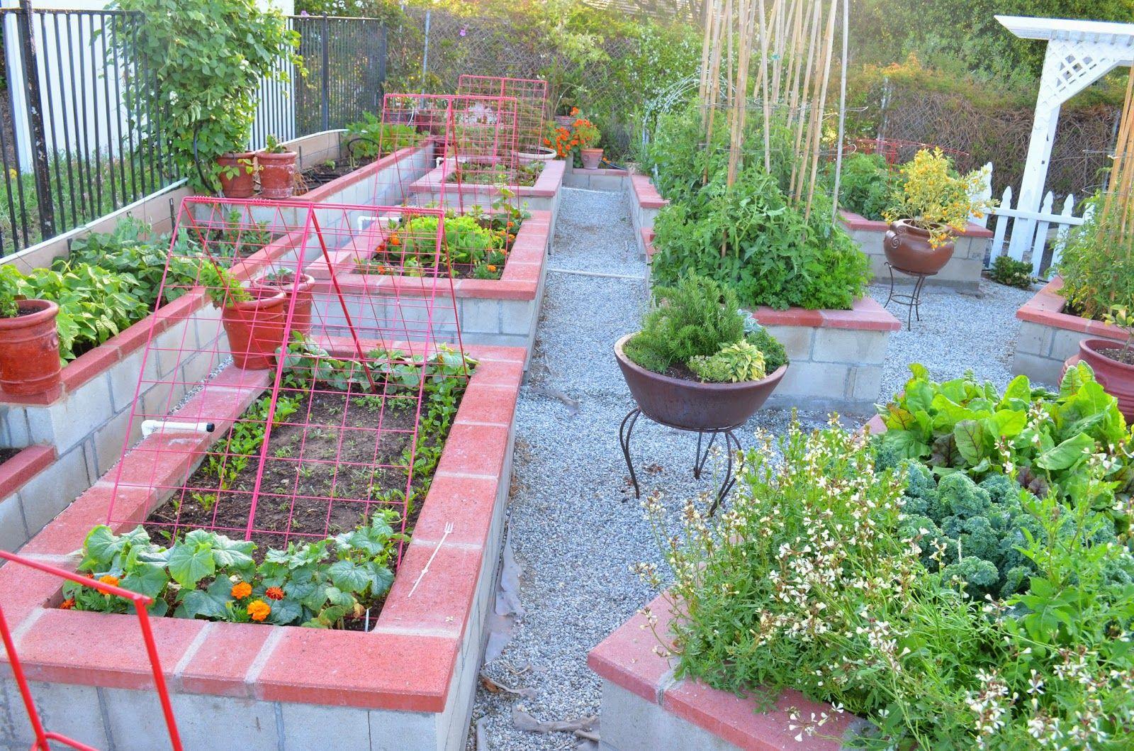 Kitchen garden. Cheap landscaping ideas, Vegetable
