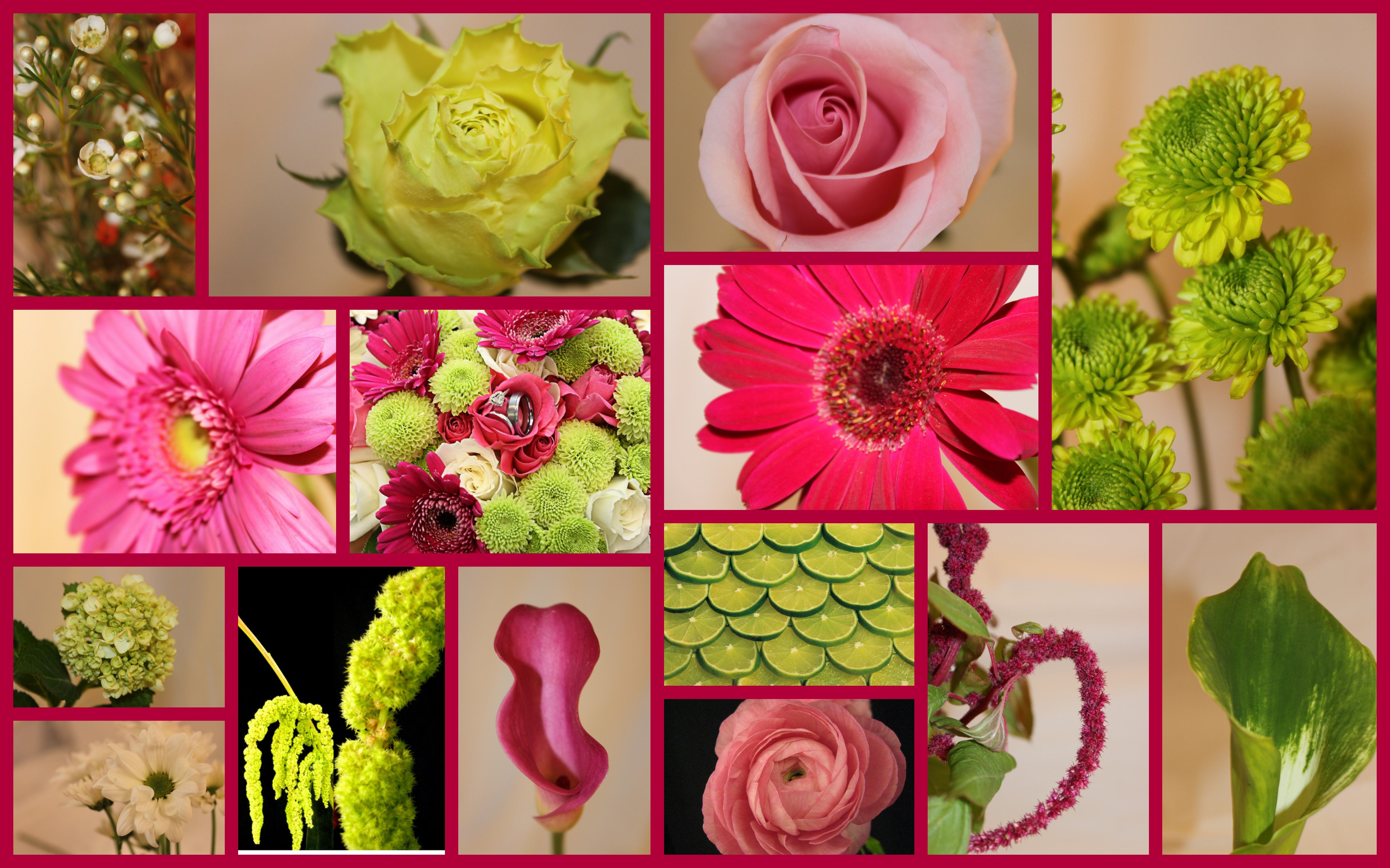lots of different types of flowers that work well with your color ...