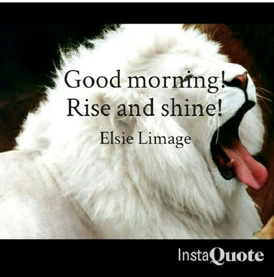 Good Morning Rise And Shine In German : Good morning rise and shine by elsie limage me mine