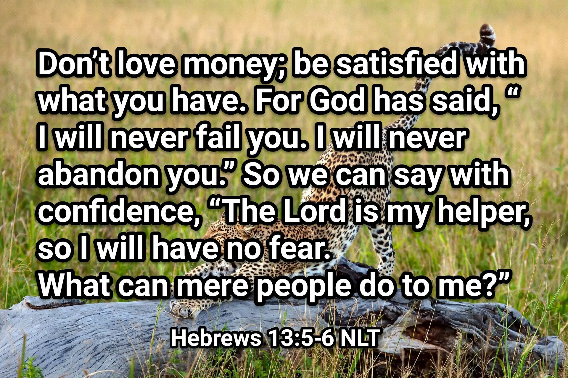 Pin by Pablo Española on Picture Verse Sayings, Hebrews