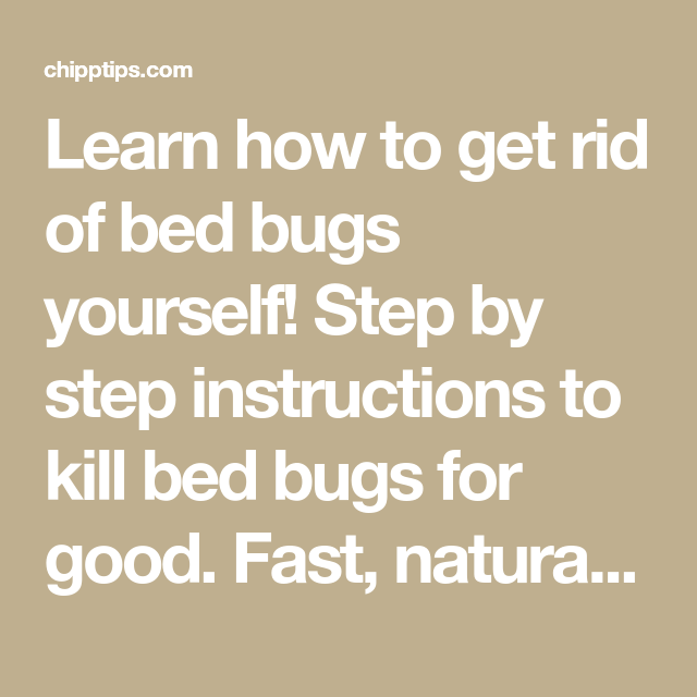 How To Get Rid Of Bed Bugs Yourself Quickly And Naturally