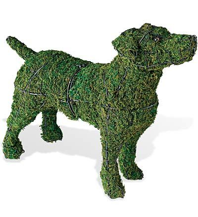 "Jack Russell Topiary, Living Sculpture For The Garden! Bushes and trees pruned into elegant animal or geometric shapes are known as topiaries, from the Latin ""topiarius"" (ornamental landscaper). These living sculptures are carefully cultivated for years to get the right look. For faster results, shaped wire cages can be used as a base for small-leaved ivy. This creates a topiary in a few months. Faster yet is the artificial topiary—with no cutting or watering required!"