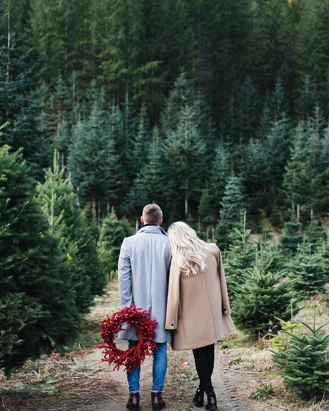Pin By Margot Daley Photography On Christmas Card Holiday Photoshoot Christmas Tree Farm Photo Shoot Christmas Couple Pictures