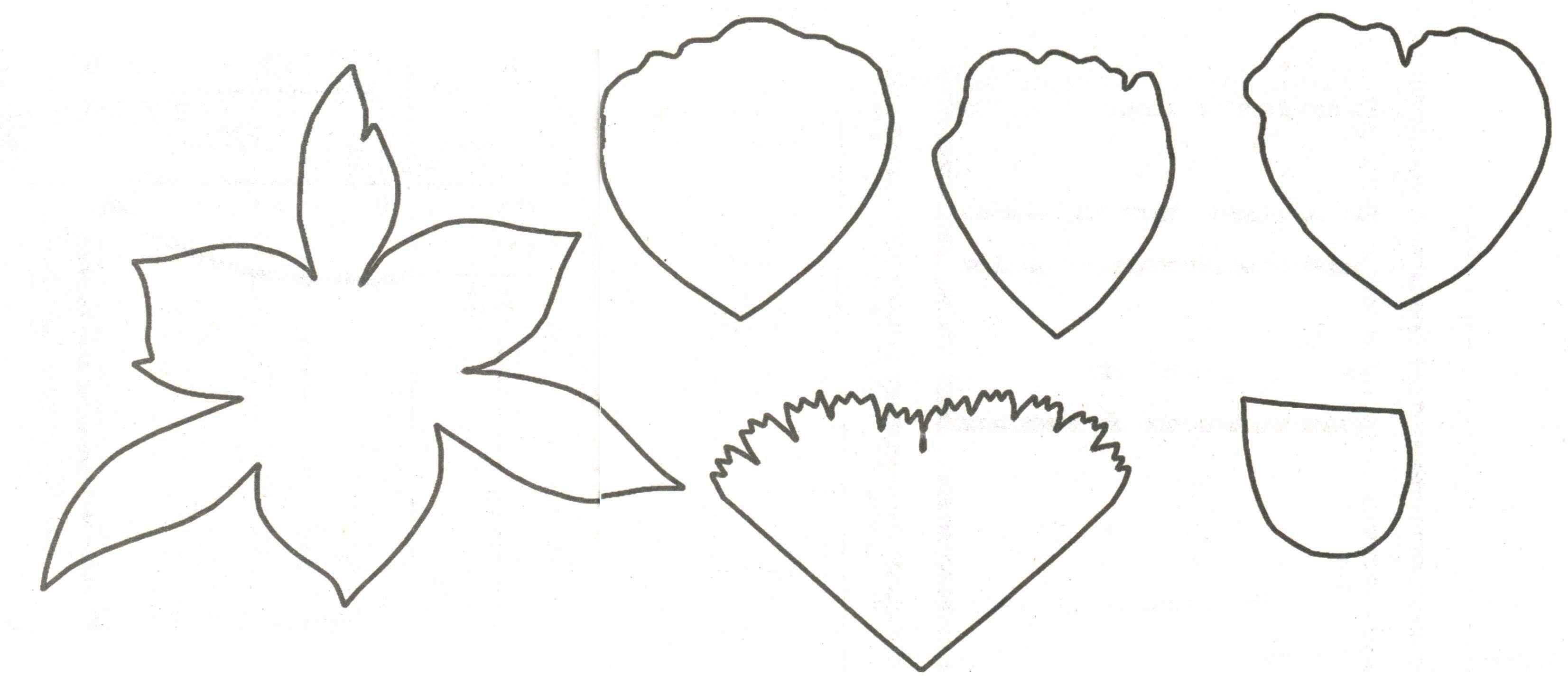 Выкройки для поделки из фоамирана