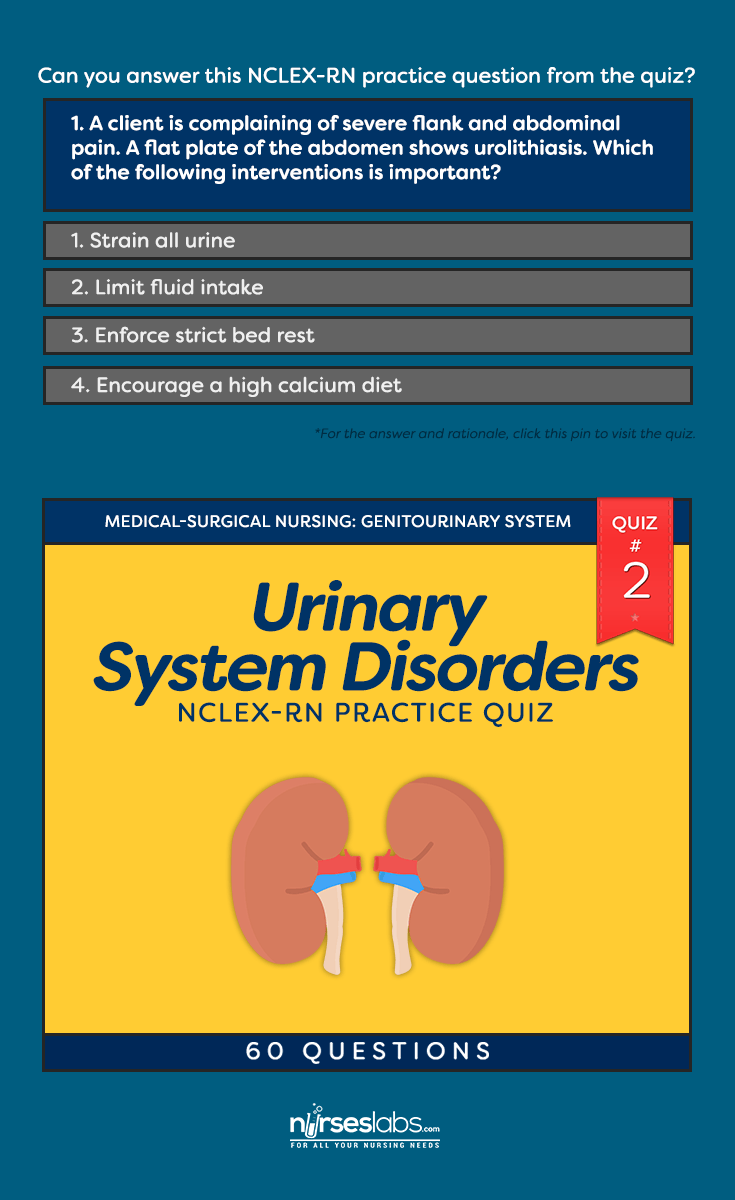 Quiz #2: Urinary System Disorders NCLEX-RN Practice Exam (60 ...