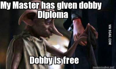 Dobby yes master meme