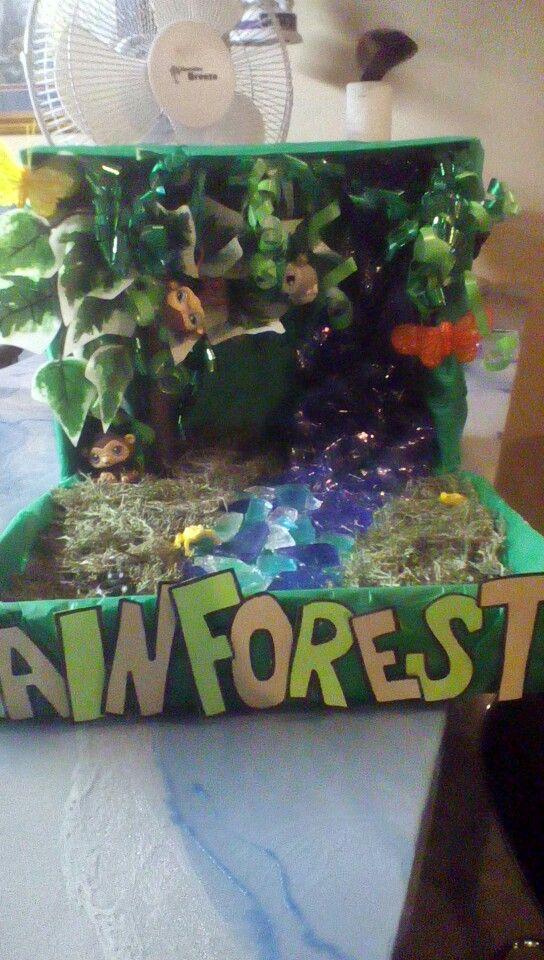 Rainforest diorama Habitats projects, Rainforest project