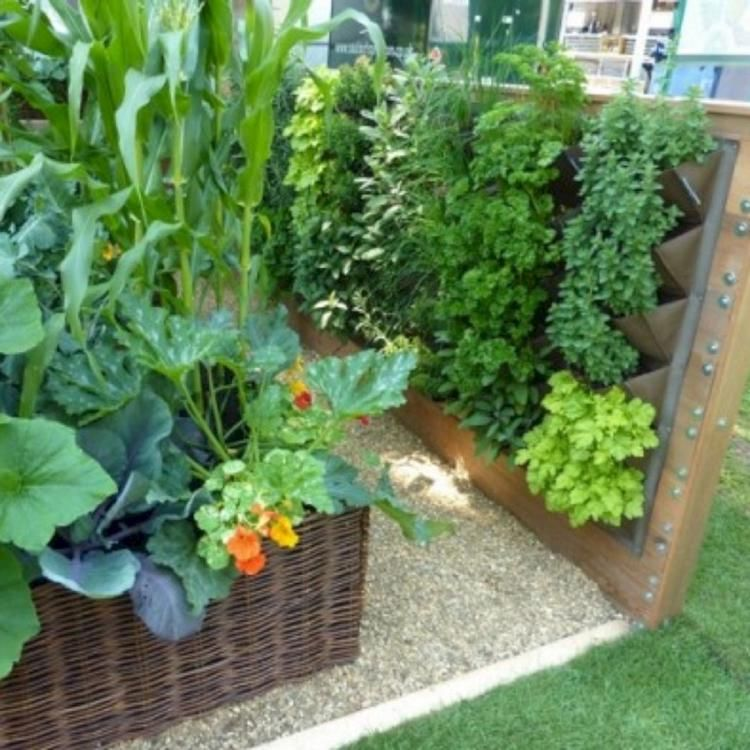 Awesome Small Space Vegetable Gardening Ideas Small Backyard Gardens Small Backyard Garden Design Small Space Gardening