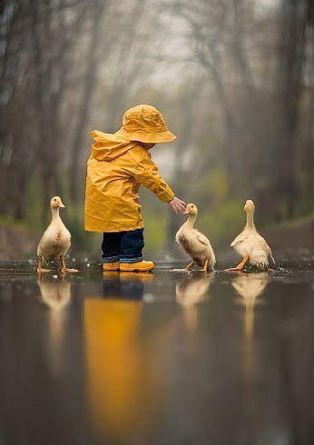 Fun in the rain with ducks. Too cute