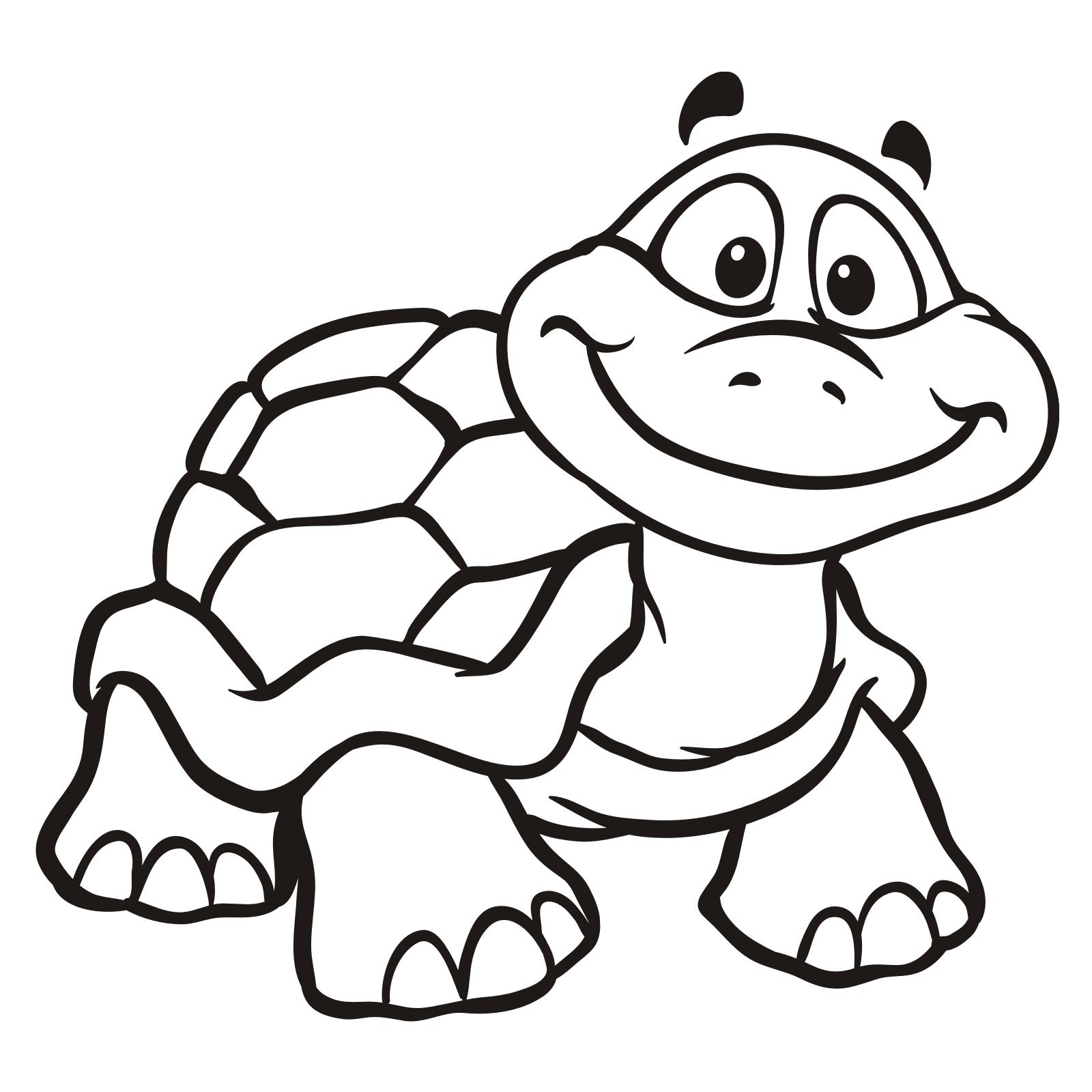 pin de dan mar em turtle  desenhos