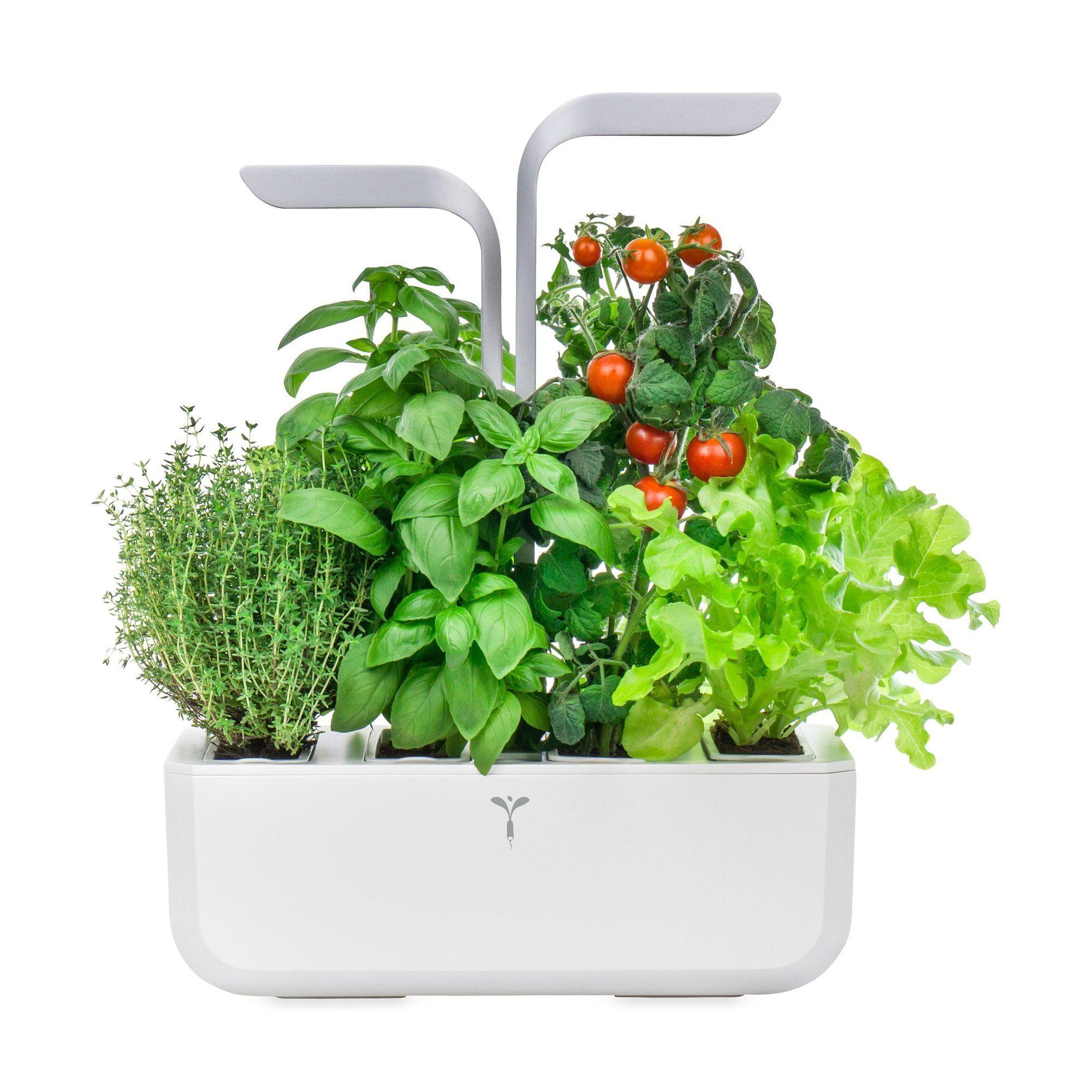 Veritable® Smart Indoor Garden In Color Indoorgardening 400 x 300