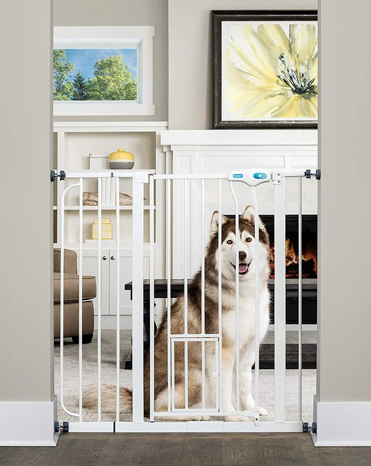 Carlson extra tall pet gate with small pet door check
