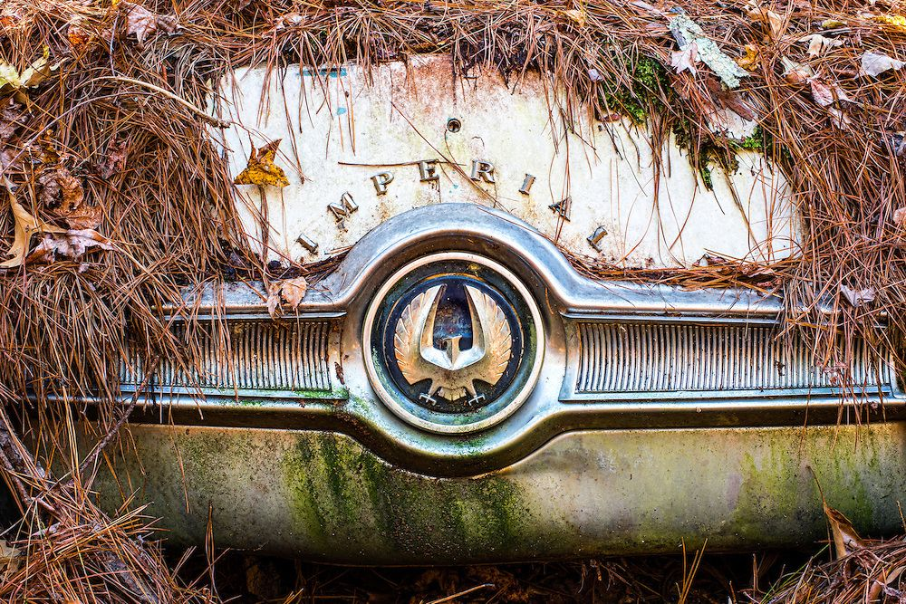 The Largest Vintage Car Graveyard in the World | Vintage Car ...
