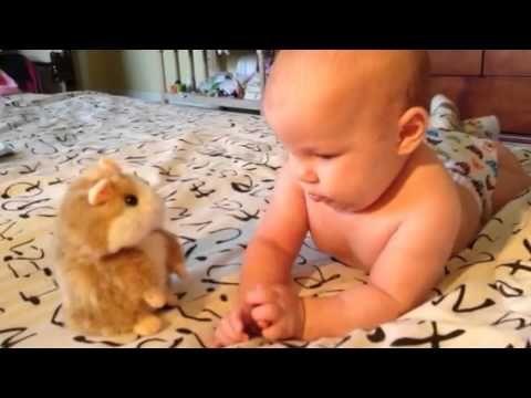 Talking Hamster and Baby Говорящий Хомяк - that's my baby :)