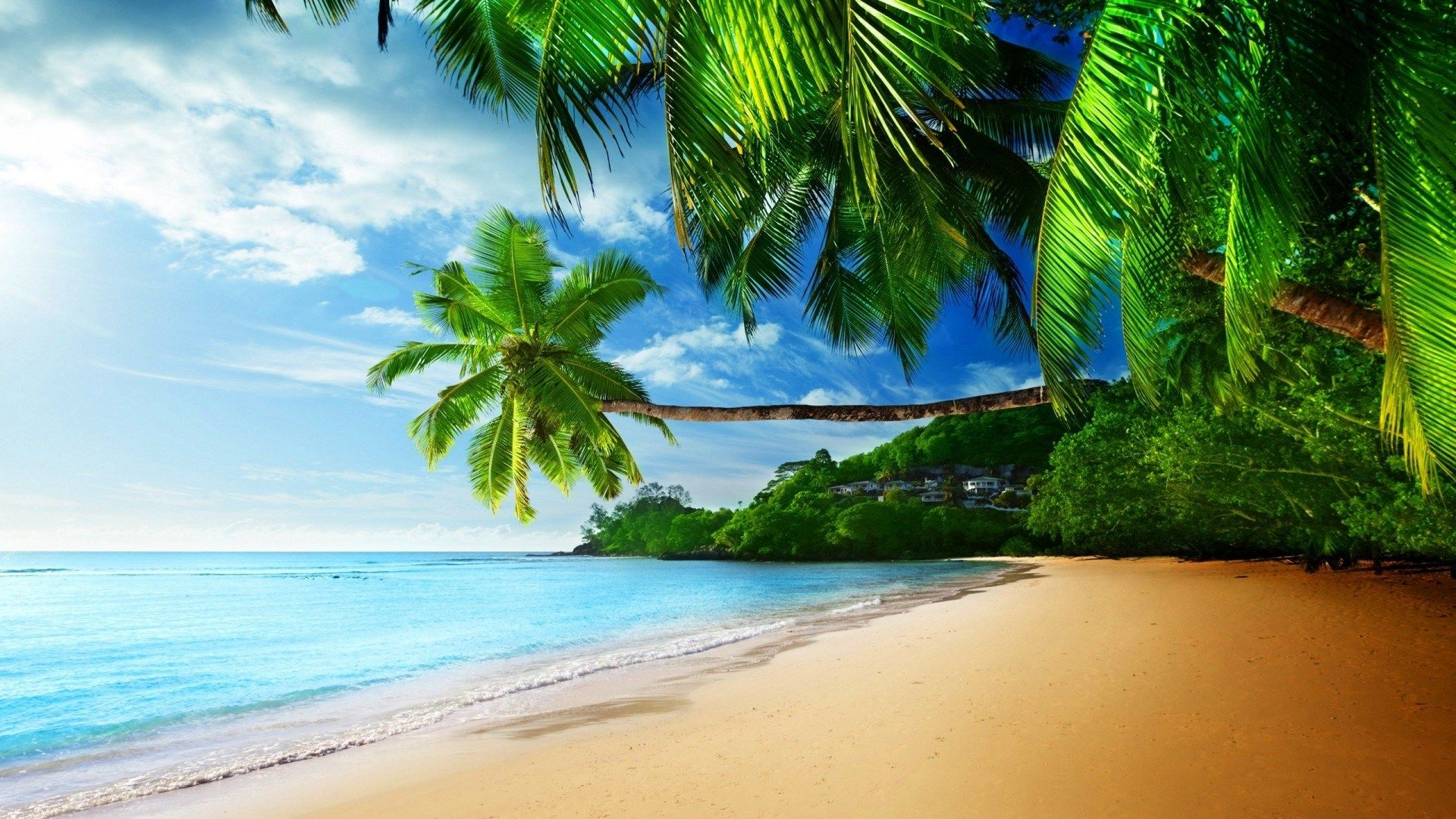Hd Tropical Island Beach Paradise Wallpapers And Backgrounds: Tropical Beach Waves Wallpapers High Resolution Desktop