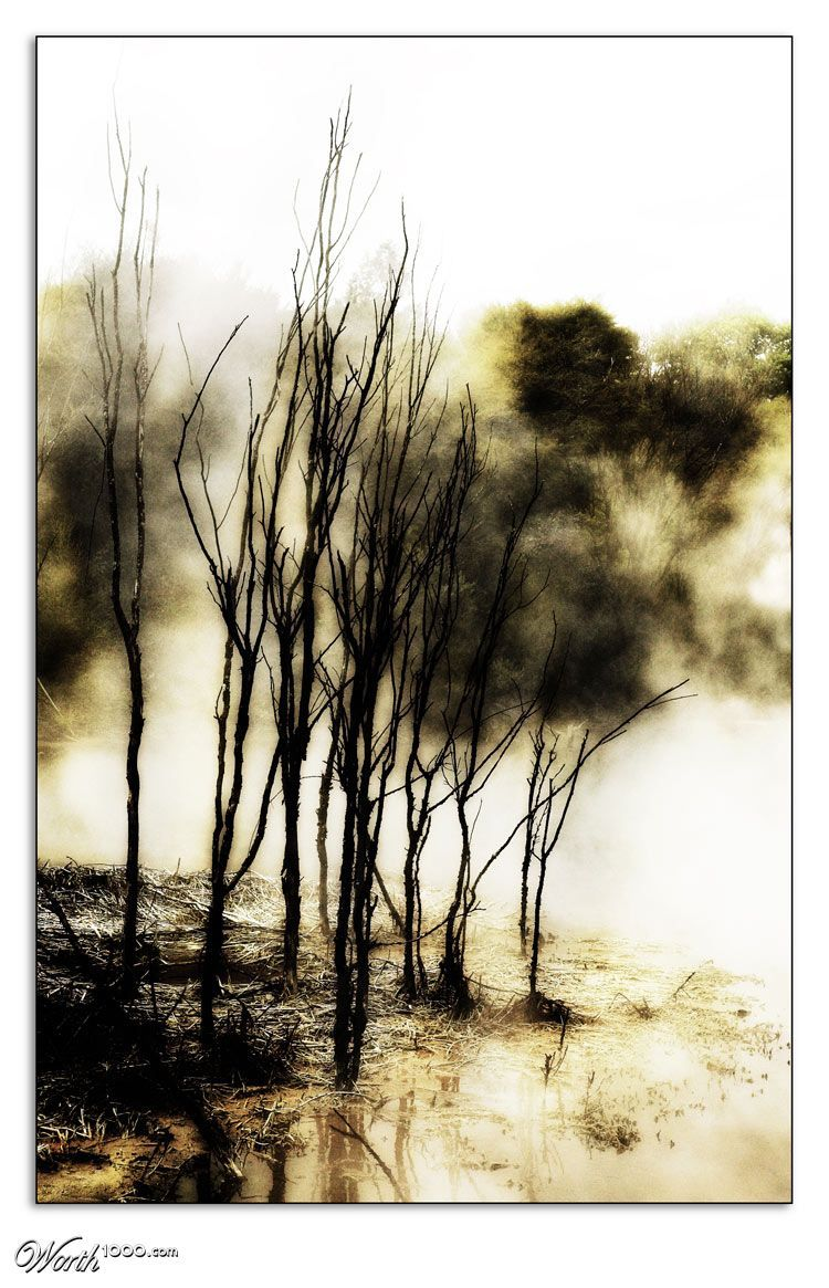 Waterpainting Worth1000 Contests Dessin Paysage Dessin Arbre