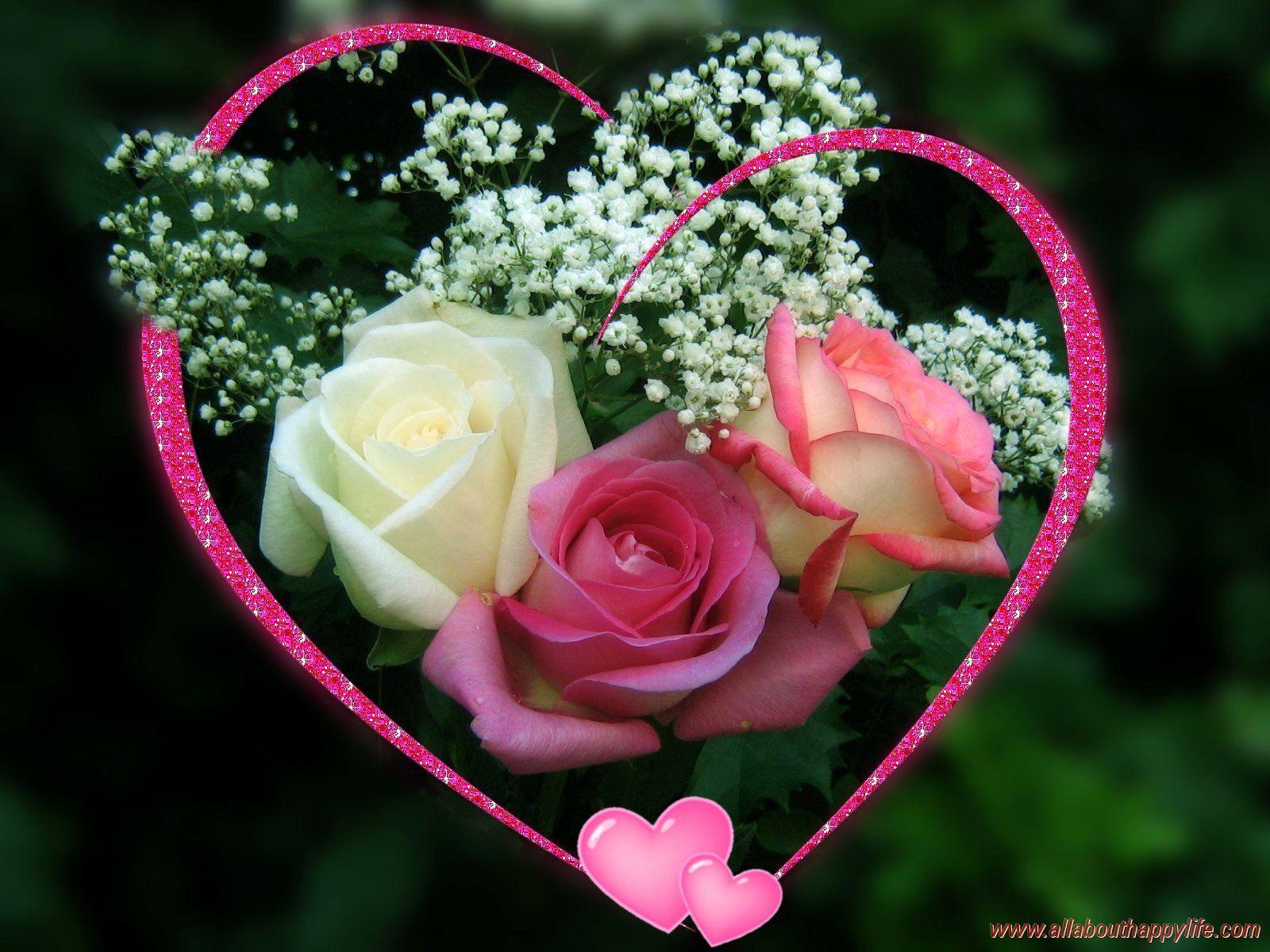 Fleur D Amour Rose Fleuriste Bulldo Flores E Primavera