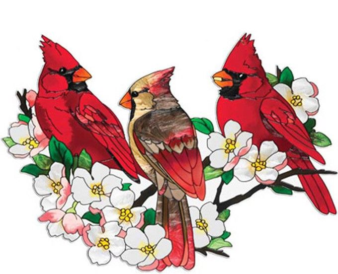 Cardinals In DogWood Tree Cross Stitch Pattern***L@@K***$4.95 CLICK VISIT TO SEE PATTERN FORSALE