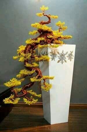pin von stenopus2010 auf bonsai pinterest bonsai baum und pflanzen. Black Bedroom Furniture Sets. Home Design Ideas