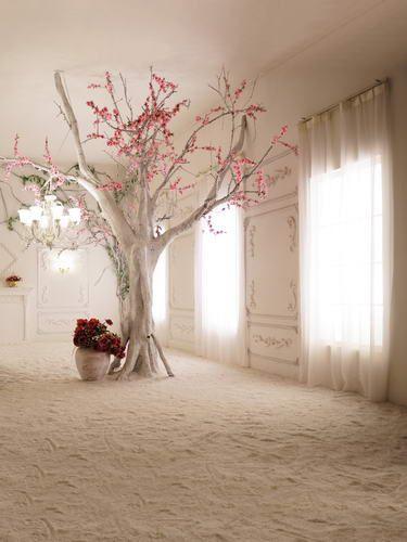 White Curtain Photoshoot