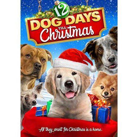 12 Dog Days Till Christmas Dvd Walmart Com Dog Movies Christmas Dvd Dogs