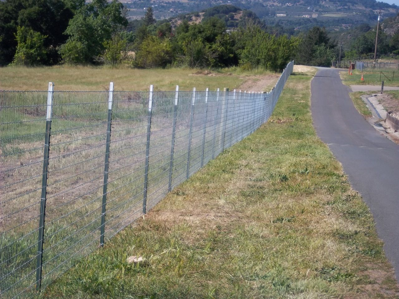 Wire fence with T-posts and Lodge poles | Horse Fence | Pinterest