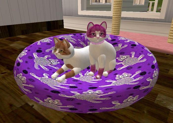Purple 1 prim cat bed