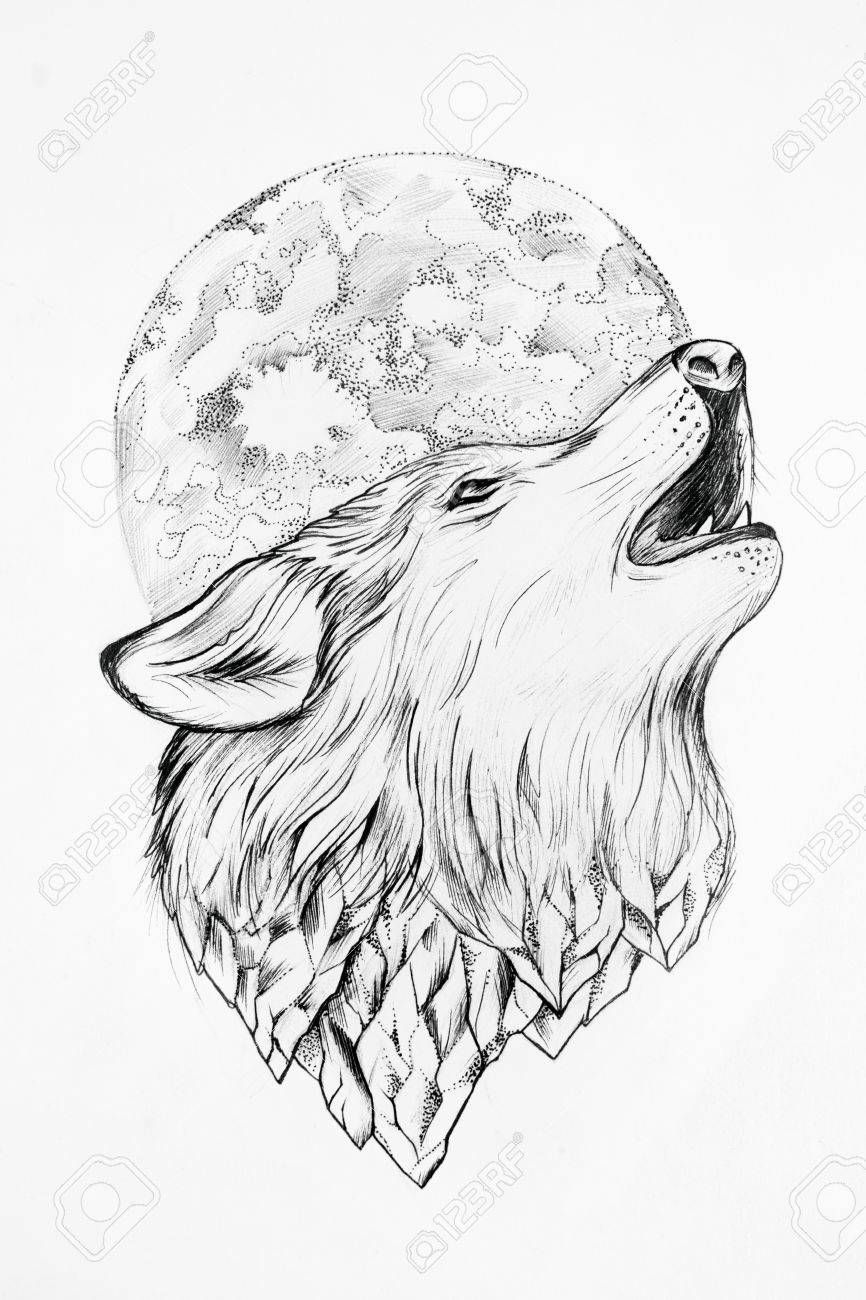 Sketch Of Wolf Howling At The Moon White Background Wolf Sketch Howling Wolf Tattoo Wolf Art