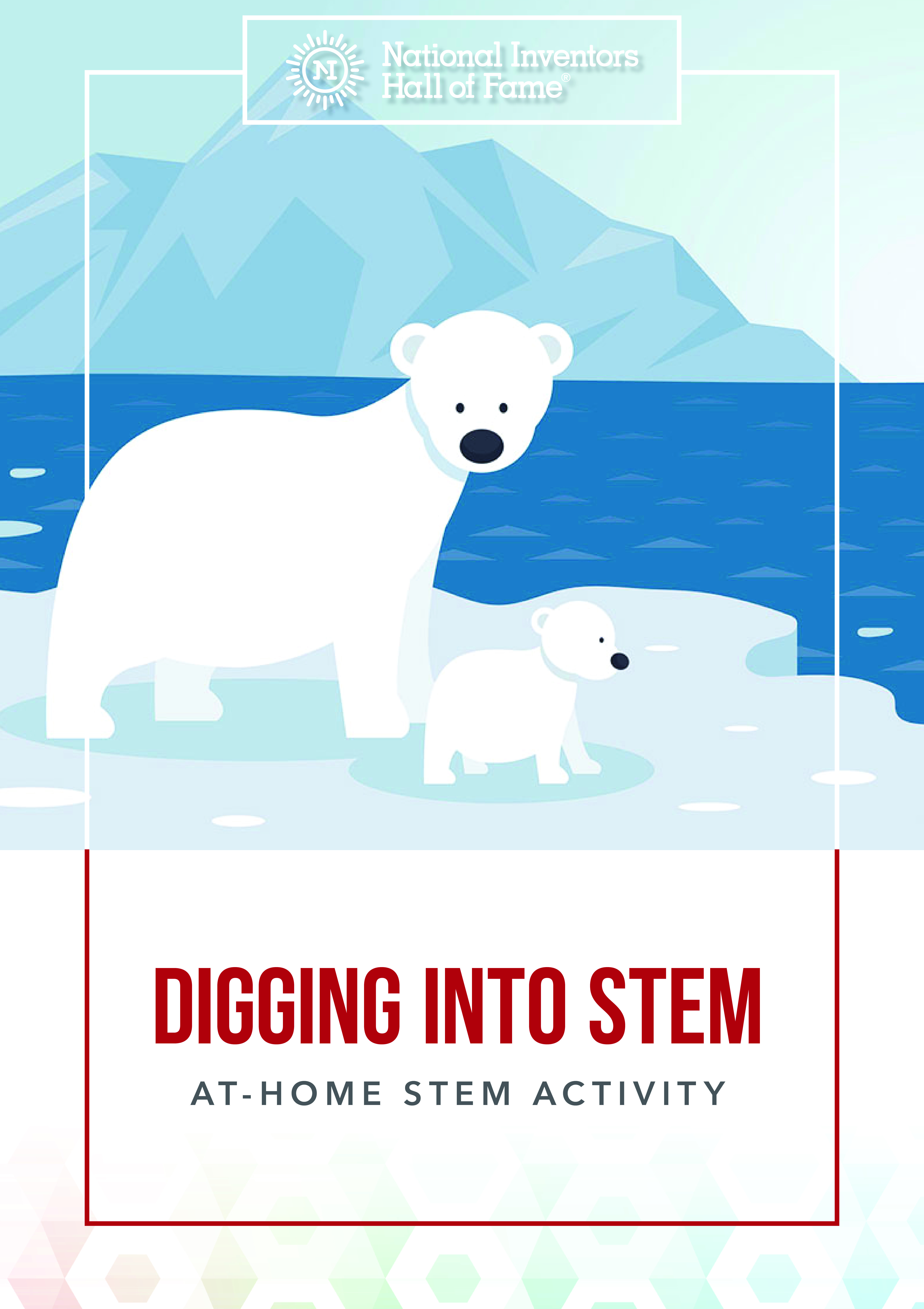 Find Out How Polar Bears Icy Environment Hides Clues