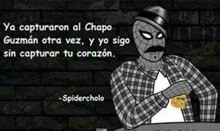 Pin De Paola En Frases Y Memes Spidercholo Baticholo Gracioso