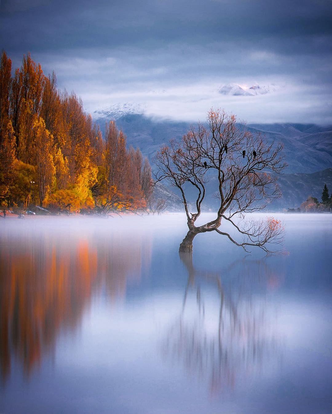 Newzealand Fine Art Landscape Photography By Rachel Stewart Fotografie Natur Malerei Kunst Fotografie