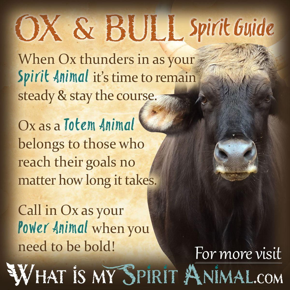 Mammal symbolism meaning power animal american symbols and totems mammal symbolism meaning biocorpaavc