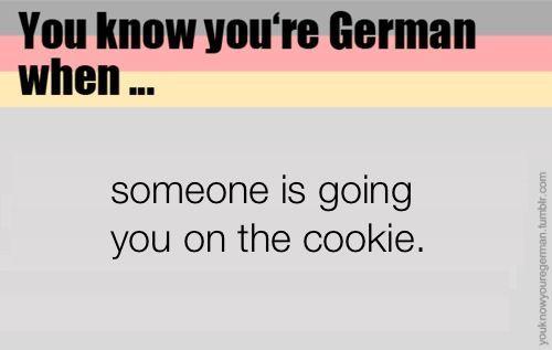 Stop Doing That German Language Humor Zitate Deutsche Witze Urkomische Zitate