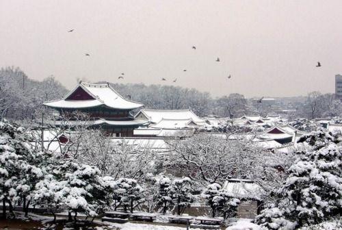 겨울 - winter