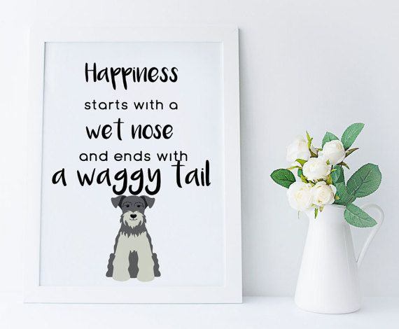 Miniature Schnauzer wall art gift,Happiness starts with a wet nose,home decor print,dog lover printable,grey schnauzer gift,schnauzer art,