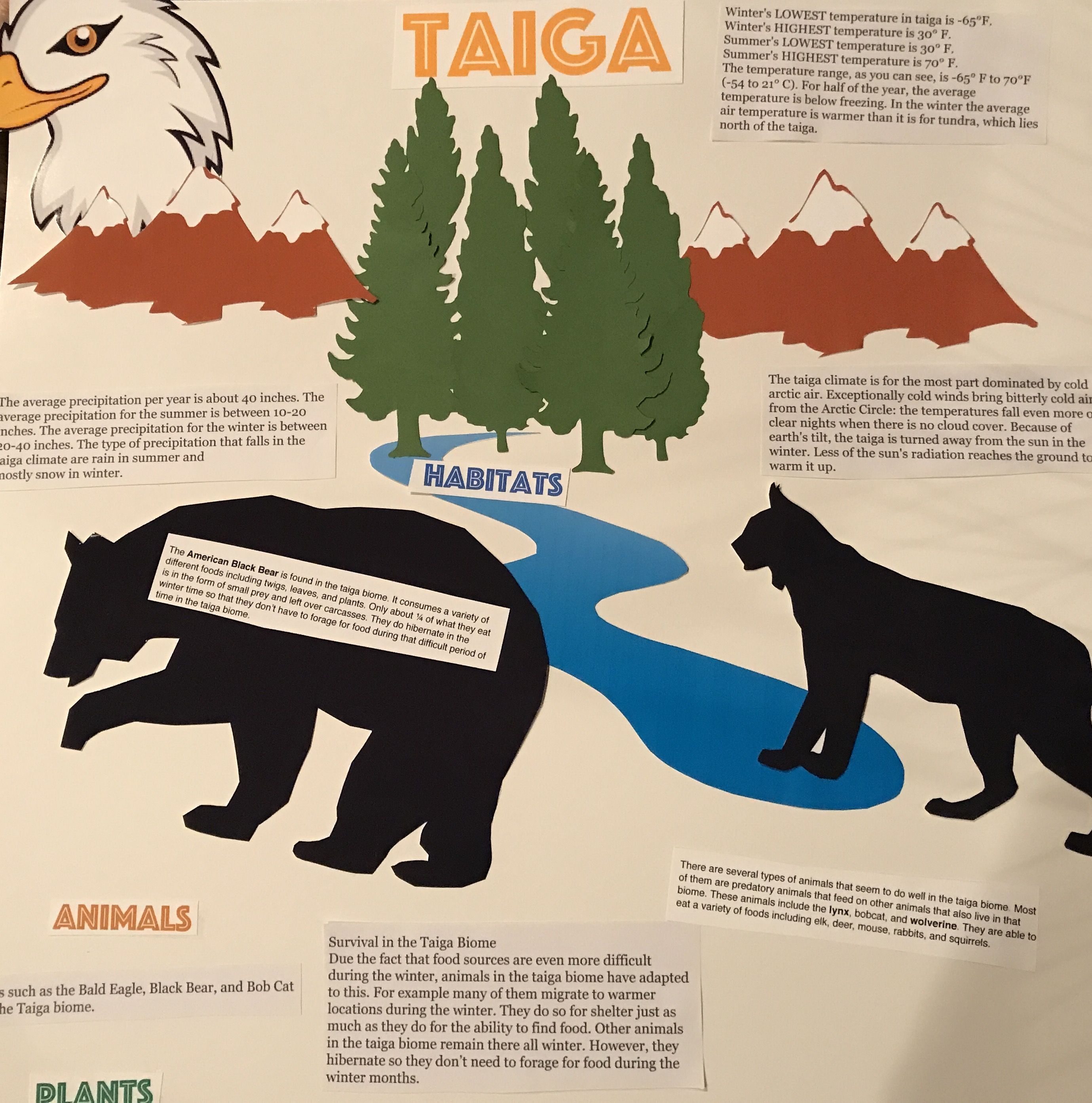 Pin by April Awer on School Projects Biomes, Habitats