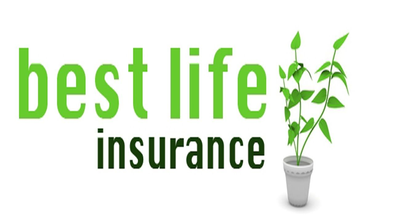 Best Life Insurance Quotes Online Choose From A Range Of Life Insurance Options To Ensure Your
