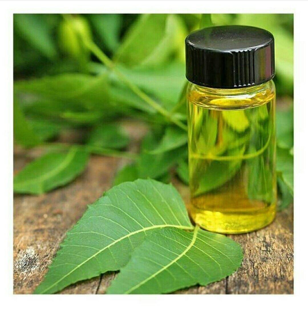 A Fresh Burst Of Neem Oil Rejuvenates Your Skin And Frees