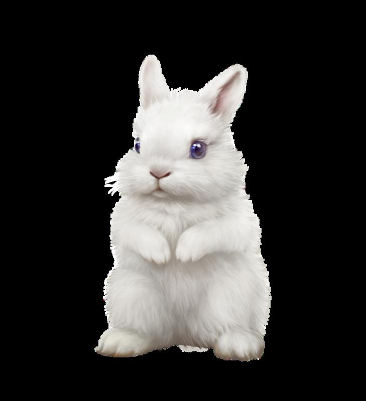 Картинка для детей белый зайчик