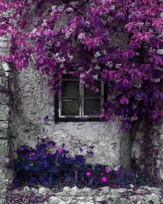 Purple Wall Art 5x7 Purple Boho Art Grey Purple Art Bright