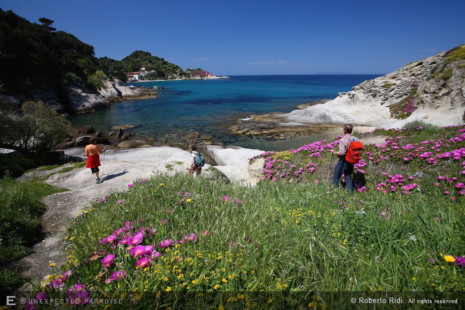 Discover the most suggestive walks on the island with official guides from the National Park