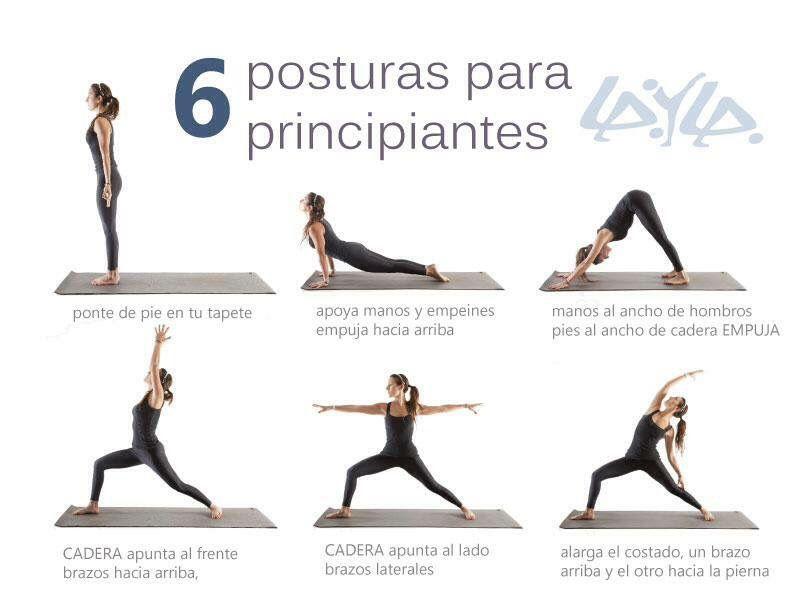 Posturas Para Principiantes Rutina De Yoga Para Principiantes Yoga Principiantes Ejercicios De Yoga