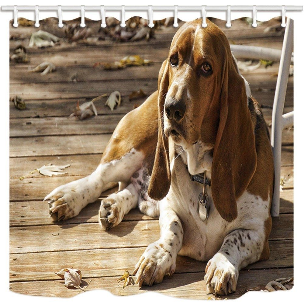Animal By Pet Dog Basset Hound And Fallen Leaves On Wood Floor Domestic#animal #basset #dog #domestic #fallen #floor #hound #leaves #pet #wood