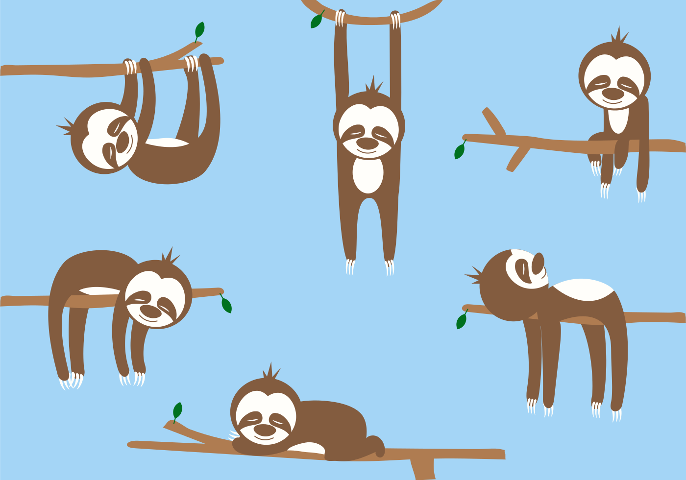 Cartoon picture hanging sloth. animation cartoon sloth