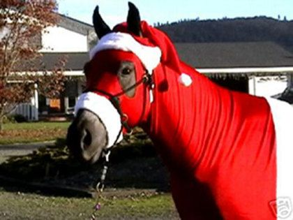 christmas horse costumes | Best Masked Ball Horse-Santa - Holiday Pet Costumes Horsey Things!! Christmas Horses, Pets