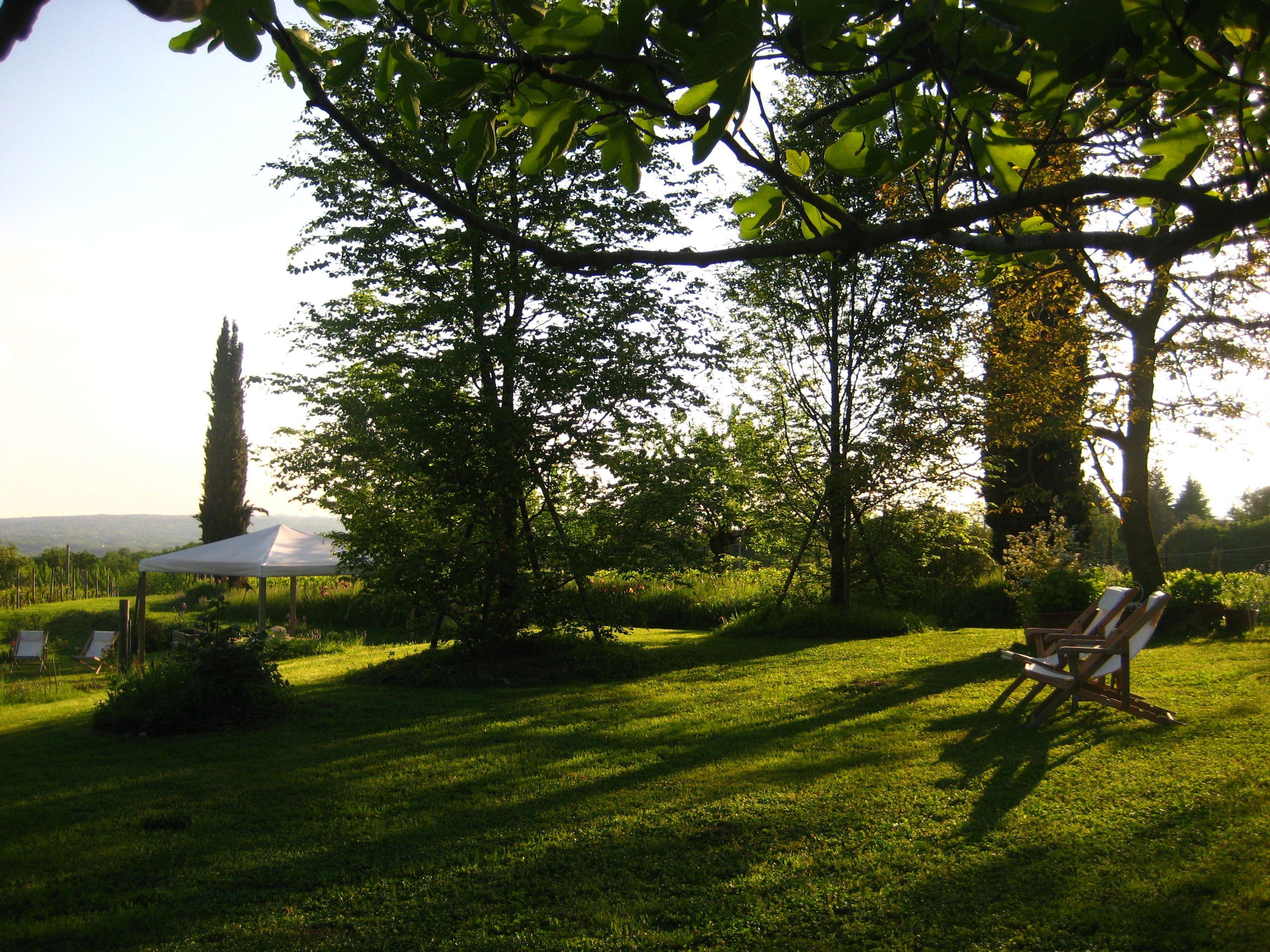 In giardino, comode sedie a sdraio per pomeriggio di relax ...