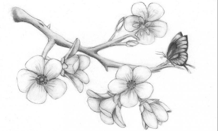 Dibujo De Flor De Cerezo Para Colorear: Tatuajes En Forma De Dibujos Muy