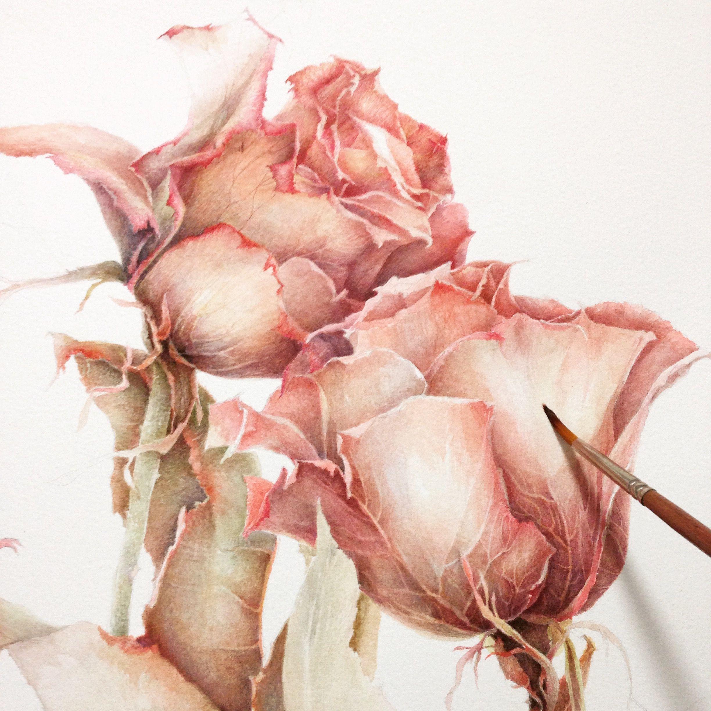 увядший цветок рисунок наверно