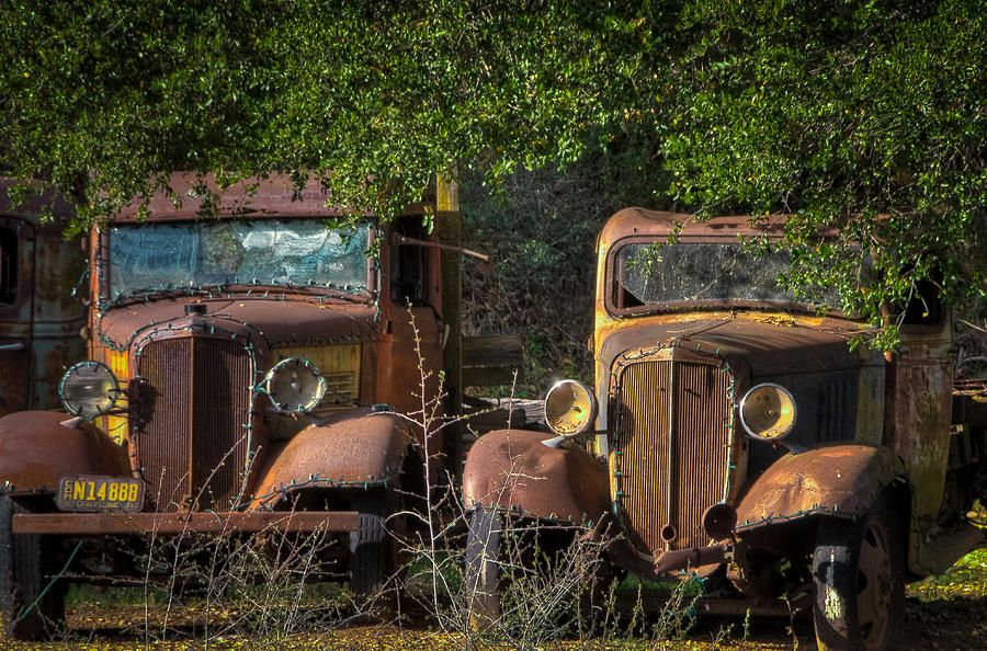 old trucks for sale | Vintage Old Trucks Photograph | ol trucks ...