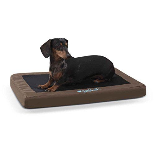 Comfy n Dry IndoorOutdoor Pet Bed ** Click image for more